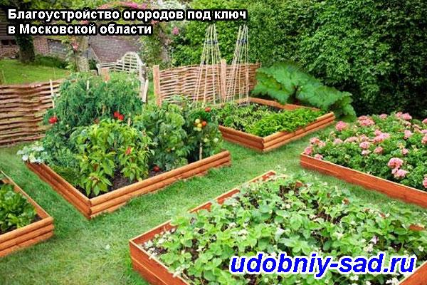 Пример благоустройства огорода под ключ в Московской области