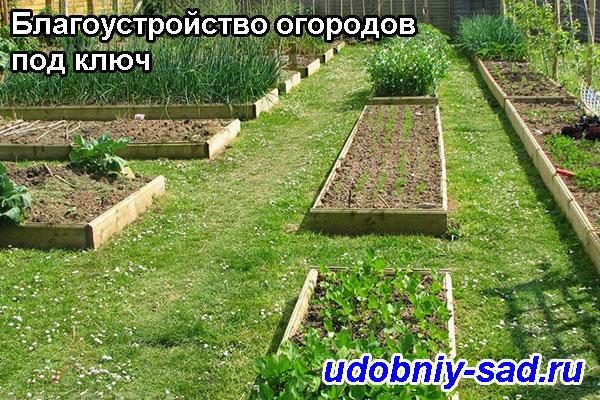 Благоустройство огородов под ключ в Московской и Тульской областях