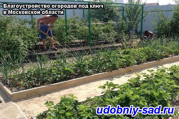 Благоустройство огородов под ключ в Московской области