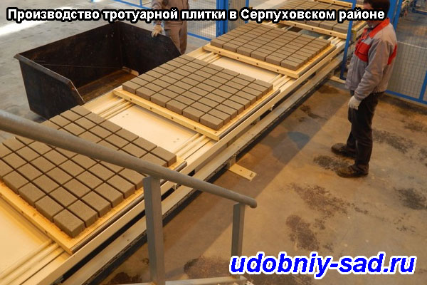 Производство тротуарной плитки в Серпуховском районе