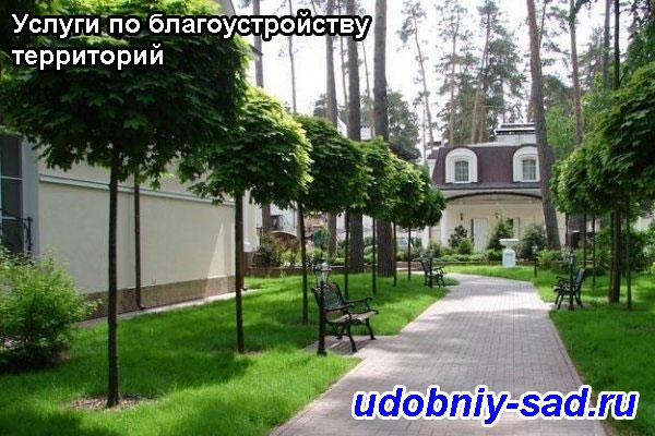 Услуги по благоустройству территории: Московская область город Серпухов