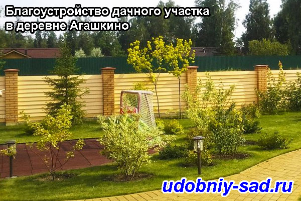 Благоустройство дачного участка в деревне Агашкино (Раменский район, Московская область)