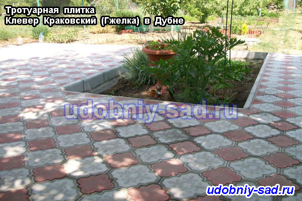 Тротуарная плитка Клевер Краковский (Гжелка) на дачном участке
