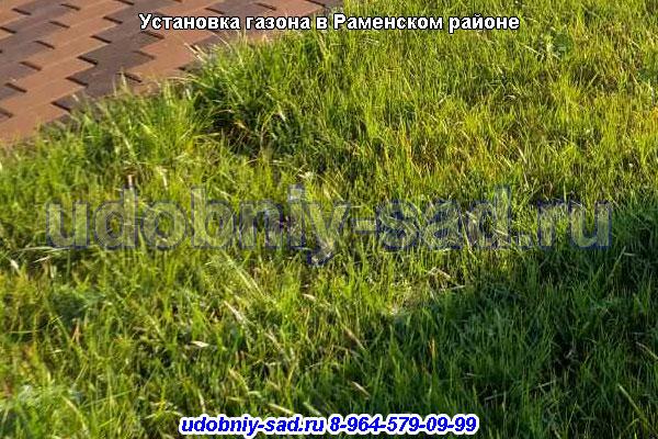 Установка газона в Раменском районе деревня Жуково